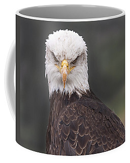 Coffee Mug featuring the photograph The Stare by Eunice Gibb