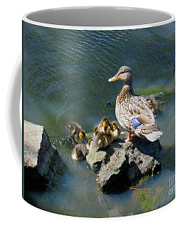 The Swimming Lesson Coffee Mug by Rory Sagner