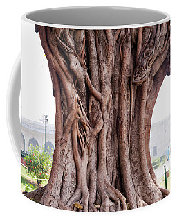 The Twisted And Gnarled Stump And Stem Of A Large Tree Inside The Qutub Minar Compound Coffee Mug by Ashish Agarwal