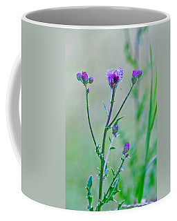 Thistledown Pastel Passion Coffee Mug