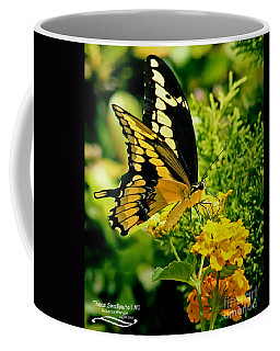 Thoas Swallowtail #1 Coffee Mug