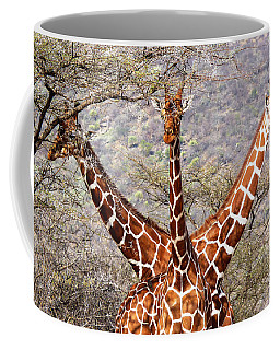 Three Headed Giraffe Coffee Mug