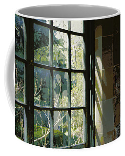 Coffee Mug featuring the photograph View Through The Window by Marilyn Wilson