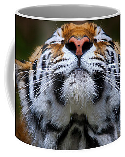 Tiger 1  Coffee Mug