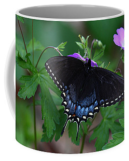 Tiger Swallowtail Female Dark Form On Wild Geranium Coffee Mug