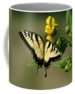 Tiger Swallowtail  Coffee Mug by TnBackroadsPhotos