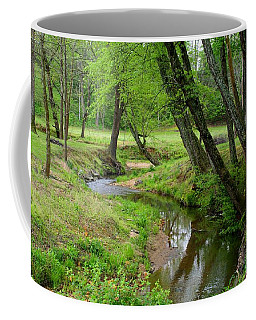 Coffee Mug featuring the photograph Toms Creek In Early Spring by Kathryn Meyer