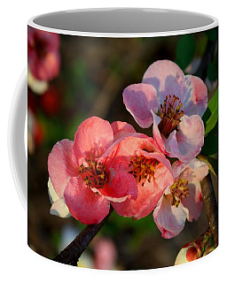 Coffee Mug featuring the photograph Toyo Nishiki Quince by Kathryn Meyer