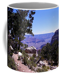 Trail To The Canyon Coffee Mug