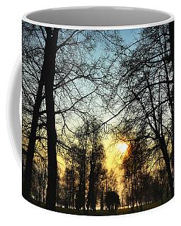 Trees And Sun In A Foggy Day Coffee Mug