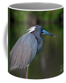Coffee Mug featuring the photograph Tricolored Heron by Art Whitton