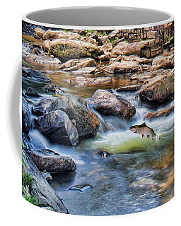 Coffee Mug featuring the digital art Trout Stream by Mary Almond