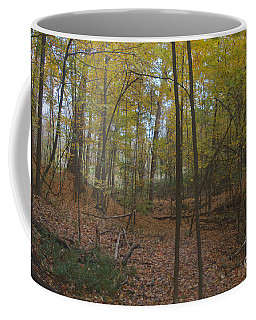 Coffee Mug featuring the photograph Tryon Park by William Norton