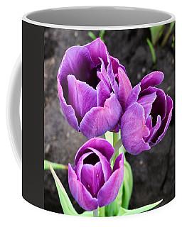 Tulips Queen Of The Night Coffee Mug