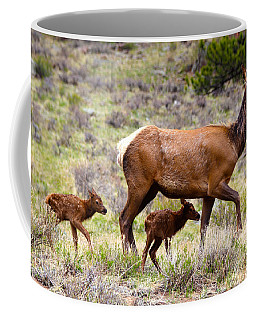 Twin Elk Calves Coffee Mug