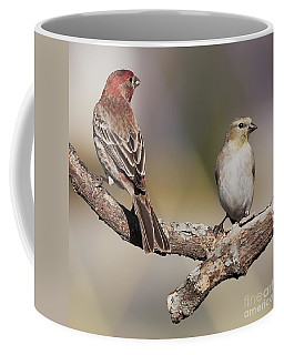 Coffee Mug featuring the photograph Two Finches by Art Whitton