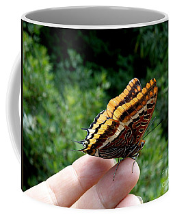 Coffee Mug featuring the photograph Two Tailed Pasha by Lainie Wrightson