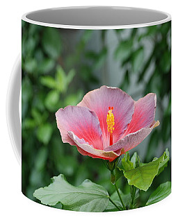 Coffee Mug featuring the photograph Unusual Flower by Jennifer Ancker