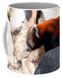 Valley Of The Red Panda Coffee Mug