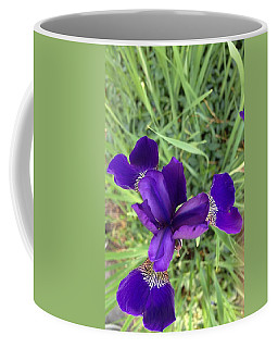 Velvet Royale Coffee Mug