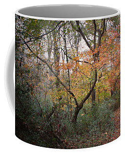 Walk Of Change Coffee Mug