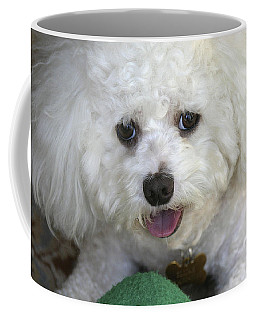 Wanna Play Ball? Coffee Mug