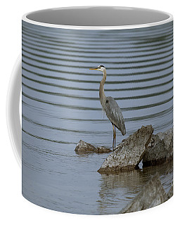 Coffee Mug featuring the photograph Watchful by Eunice Gibb