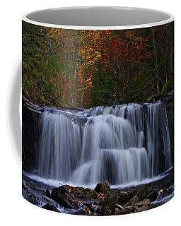 Waterfall Svitan Coffee Mug