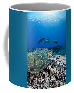West Maui Sea Turtles Coffee Mug