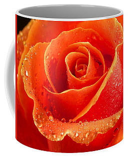 Wet Rose Coffee Mug