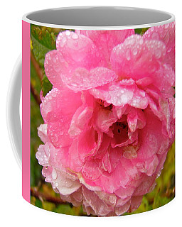 Coffee Mug featuring the photograph Wet Rose by Stephanie Moore