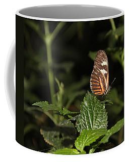 What Is My Next Step Coffee Mug
