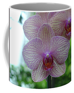 White And Pink Orchid Coffee Mug