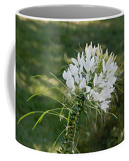 White Cleome Coffee Mug