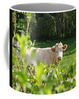 White Cow Coffee Mug