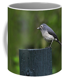 White-eyed Slaty Flycatcher Coffee Mug