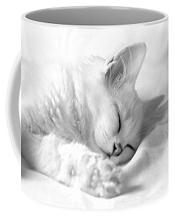 Coffee Mug featuring the photograph White Kitten On White. by Raffaella Lunelli