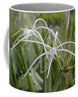 White Spider Orchid Coffee Mug