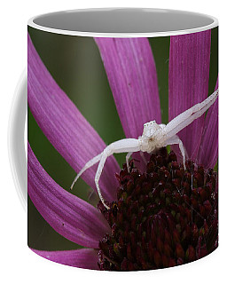Whitebanded Crab Spider On Tennessee Coneflower Coffee Mug