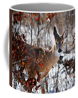 Whitetail Deer In Snow Coffee Mug