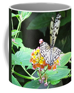 Coffee Mug featuring the photograph Wings Up by Phyllis Kaltenbach