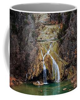 Winter Time At The Falls Coffee Mug by Doug Long