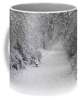 Coffee Mug featuring the photograph Winter's Trail by Elizabeth Winter