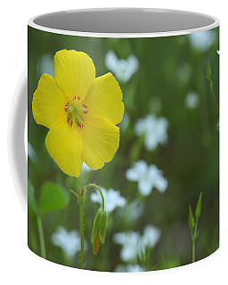 Wood Sorrel And Sandwort Coffee Mug