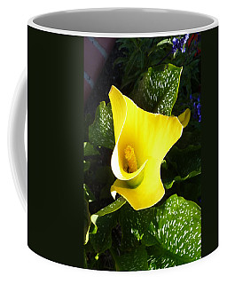 Yellow Calla Lily Coffee Mug by Carla Parris