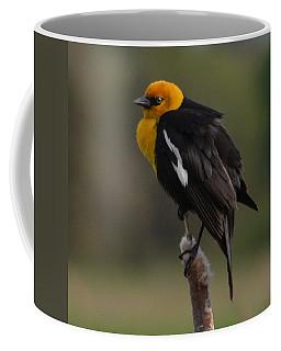 Yellow-headed Blackbird Coffee Mug