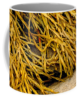 Yellow Kelp Coffee Mug by Brent L Ander