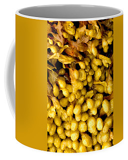 Yellow Kelp Pods Coffee Mug by Brent L Ander