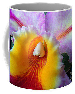 Coffee Mug featuring the photograph Yellow Purple Orchid by Kristine Merc