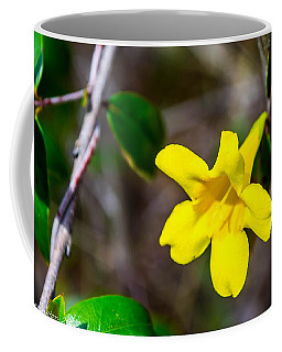 Coffee Mug featuring the photograph Yellow by Shannon Harrington